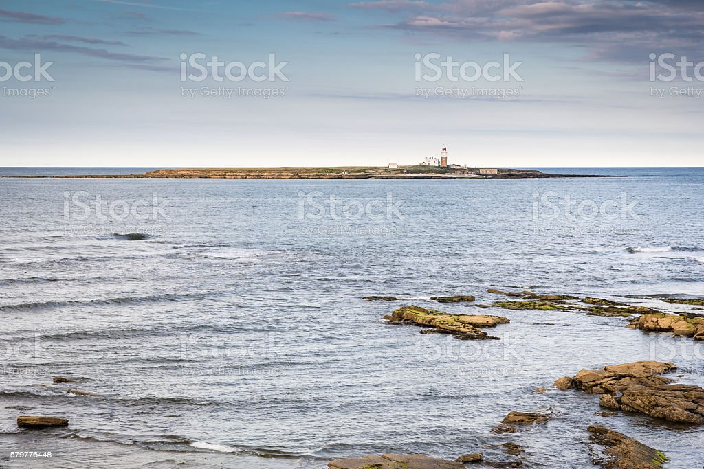 Coquet Island Nature Reserve stock photo