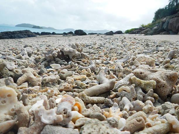 coral beach - die toteninsel stock-fotos und bilder