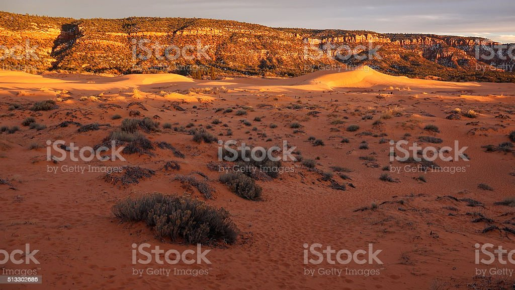 Coral Pink Sand Dunes State Park at Sunset stock photo