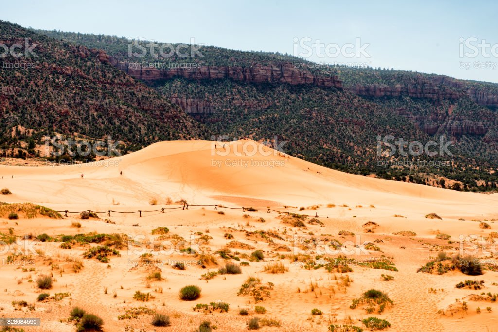 Coral Pink Sand Dunes State Park, Utah, Usa stock photo