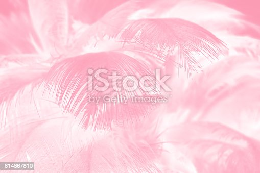 istock Coral Pink vintage color trends feather texture background 614867810