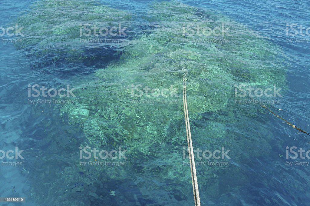 Coral Reef anchoring royalty-free stock photo