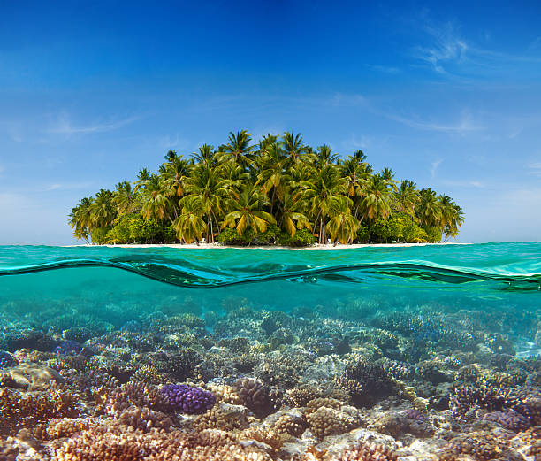 Coral reef and the Island stock photo