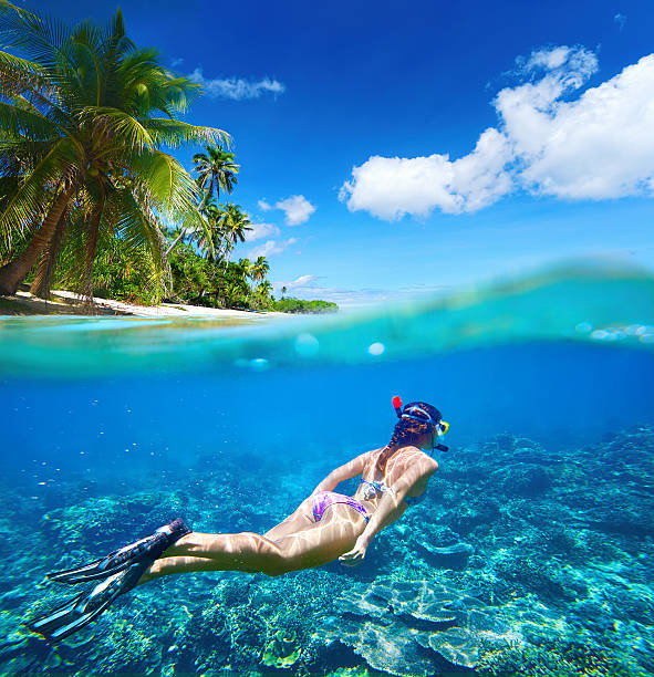 Coral reef in tropical sea on background of green island stock photo