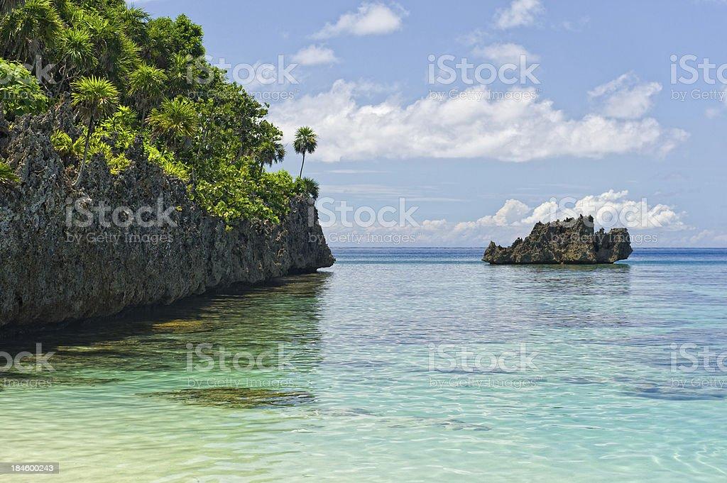 Coral Reef Roatan Honduras stock photo