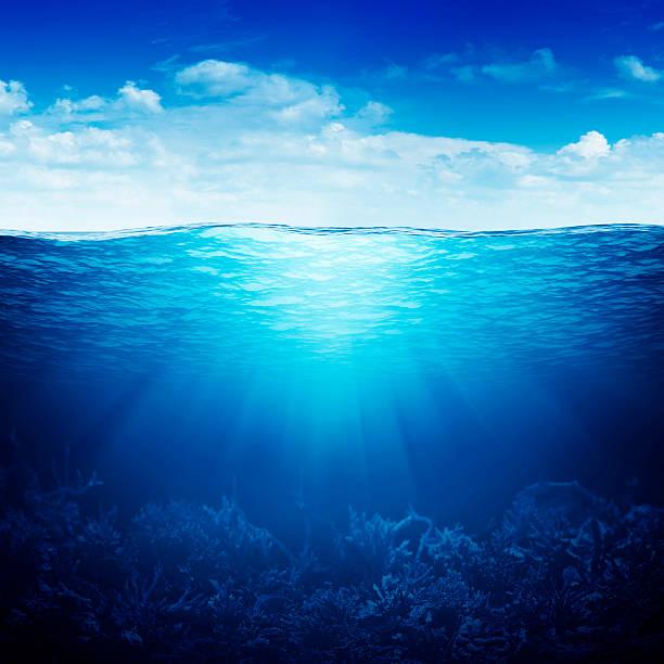 korallenriff unterwasser bis unten im waterline - coral and mauve stock-fotos und bilder