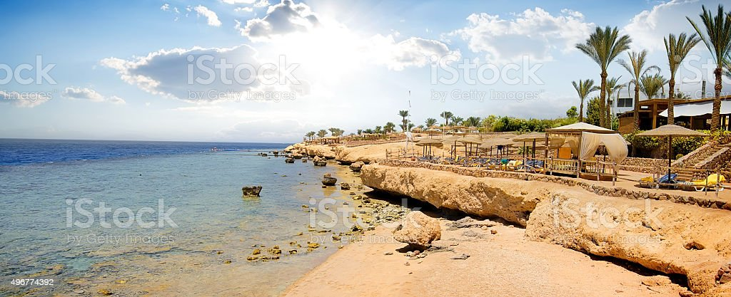Coral reefs on beach stock photo