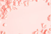 istock Coral rose flower petals on coral background. Flat lay, top view, copy space 1094777154
