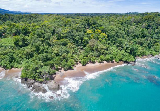 Corcovado National Park, Costa Rica stock photo