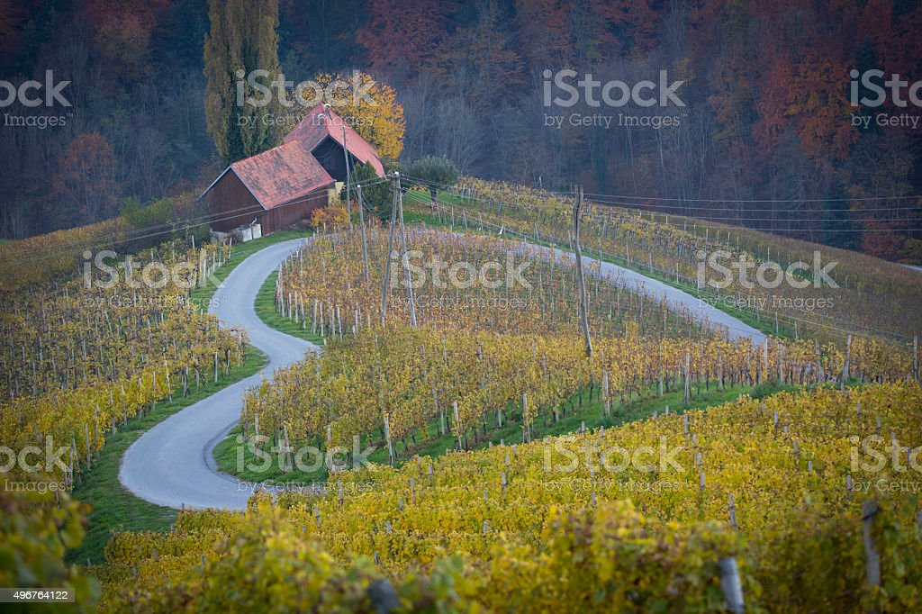 cordate, heartlike road in slovenia stock photo