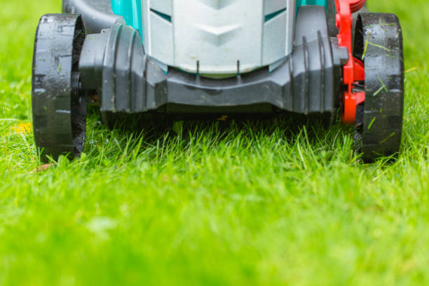 Cordless battery power lawn mower close up on green grass background stock photo