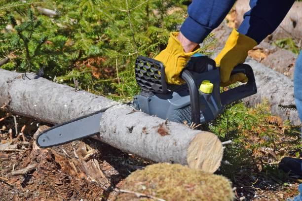 Akku Kettensäge Schneiden von Holz – Foto