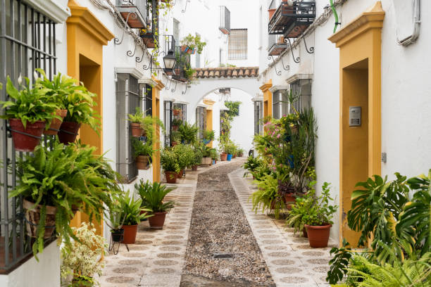 Cordoba (Andalucia, Spain): street Cordoba (Andalucia, Spain): old typical street in the Juderia cordoba spain stock pictures, royalty-free photos & images