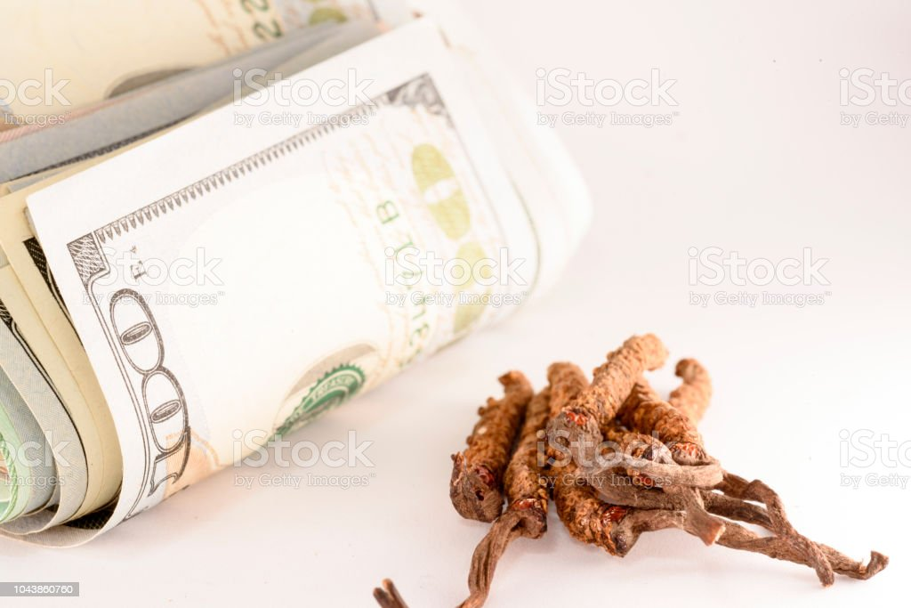 Cordyceps Is Chinese And Money Stock Photo - Download Image