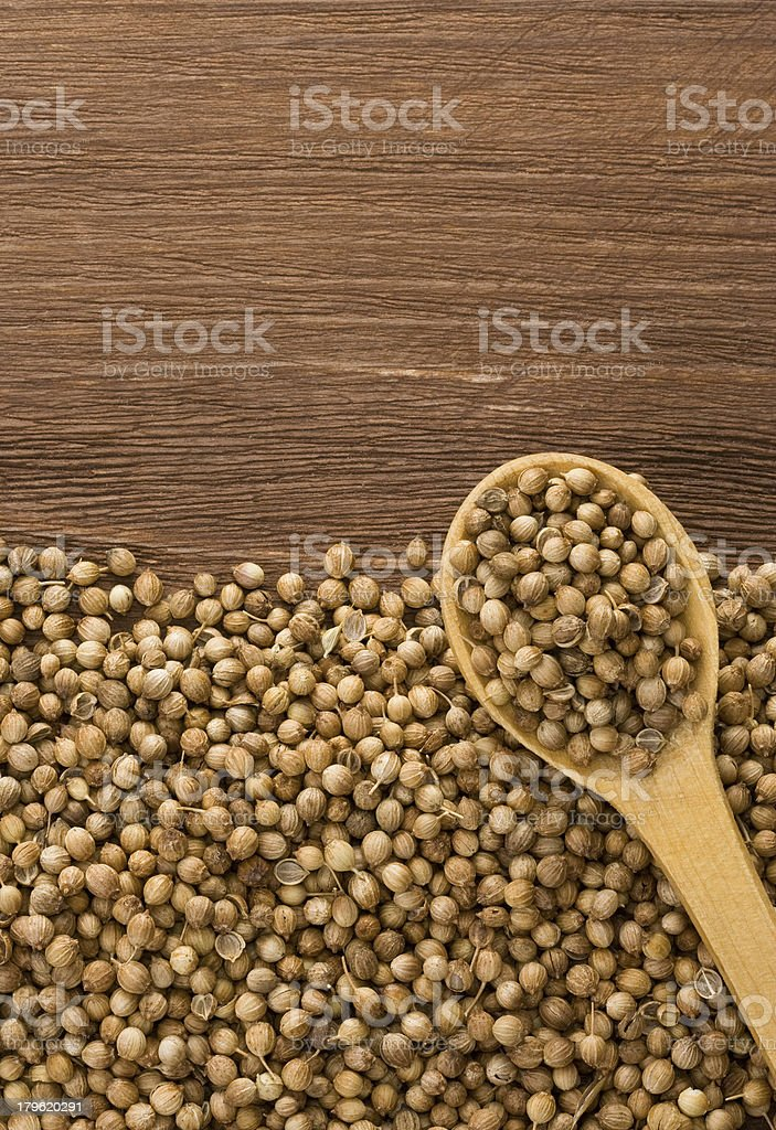 coriander and spoon on wood royalty-free stock photo