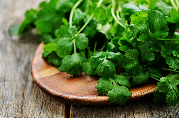 coriander coriander on a dark wood background. tinting. selective focus cilantro stock pictures, royalty-free photos & images