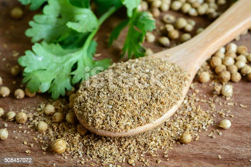 Coriander powder, Aromatic ingredients and condiment on rustic wooden table