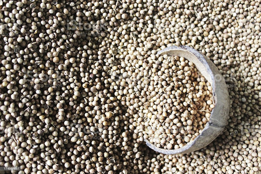 Coriander seed in coconut shell royalty-free stock photo