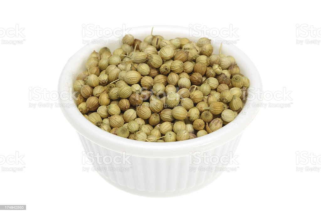 Coriander seeds in a small white bowl royalty-free stock photo