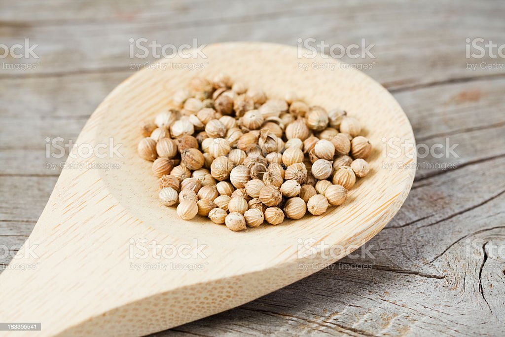 Coriander Seeds on Wooden Spoon royalty-free stock photo