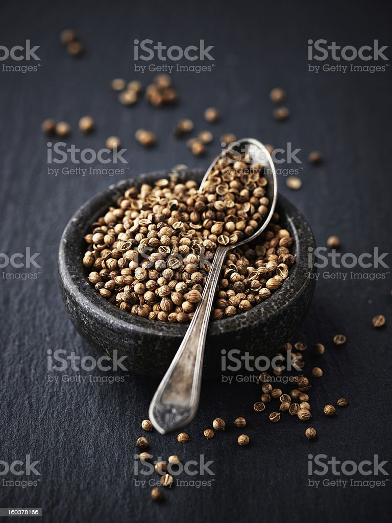 Coriander Seeds royalty-free stock photo