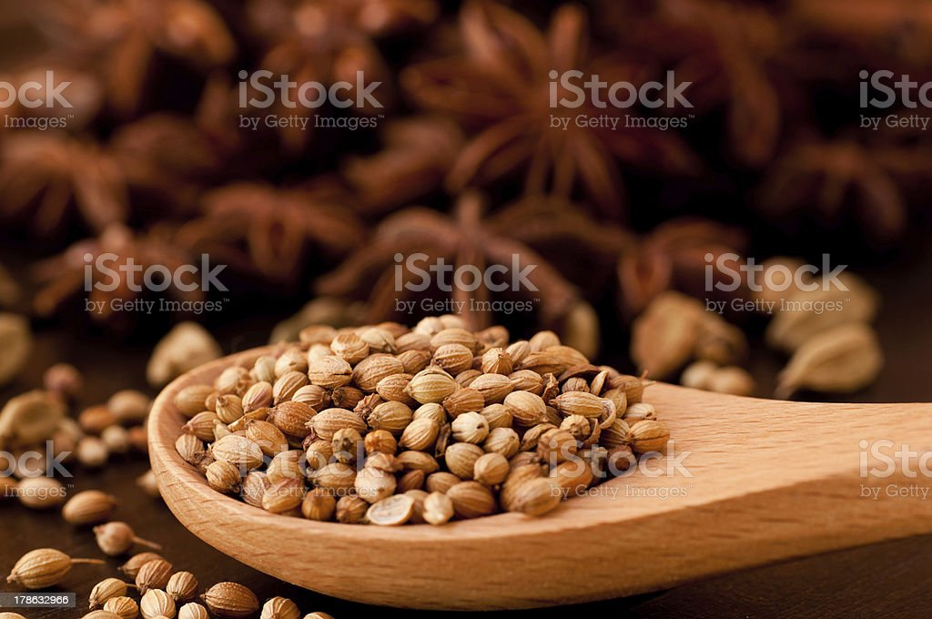 Coriander spice on a wooden spoon extreme close up royalty-free stock photo