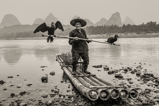 Yangshuo, China - October 20, 2013: Cormorant fisherman with ancient bamboo boat on the Li River in Yangshuo, Guangxi, China. Black and white photography (sepia).
