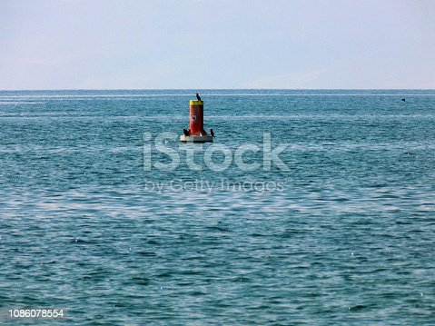 Cormorants stands on a floating nautical sign on the middle of the lake