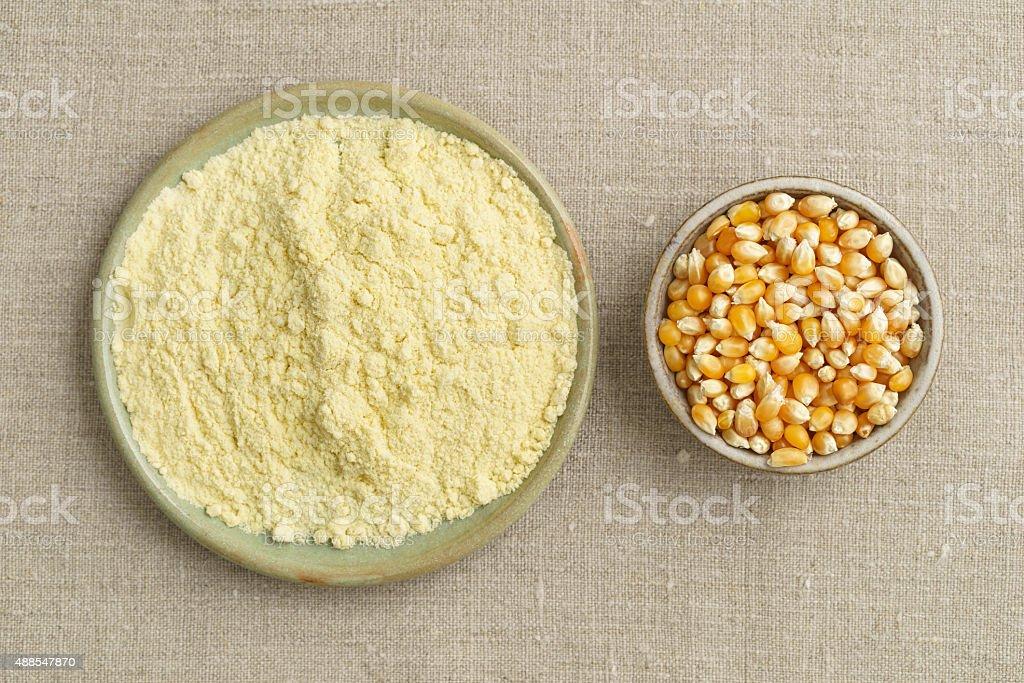 Corn and cornmeal stock photo