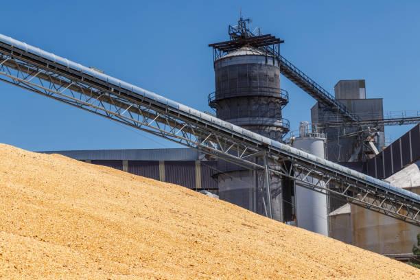 옥수수와 곡물 처리 또는 터미널을 수확 옥수수 식품, 피드 또는 에탄올 v 사용할 수 있습니다. - 제조 공장 뉴스 사진 이미지