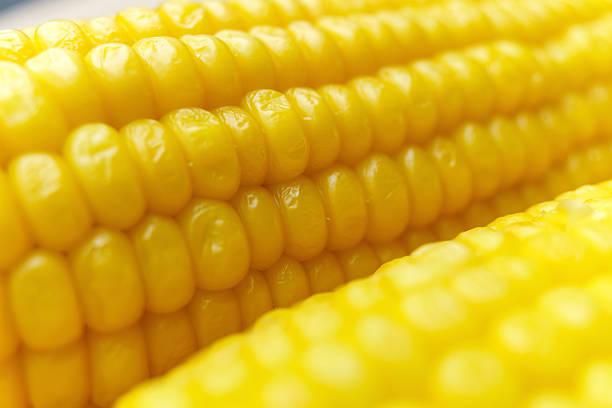 Corn cob details stock photo