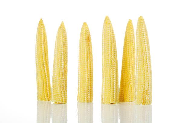 Corn cobs, close-up stock photo