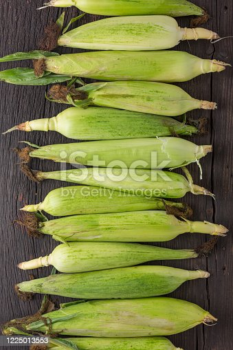 Corn cobs Many ears wooden table