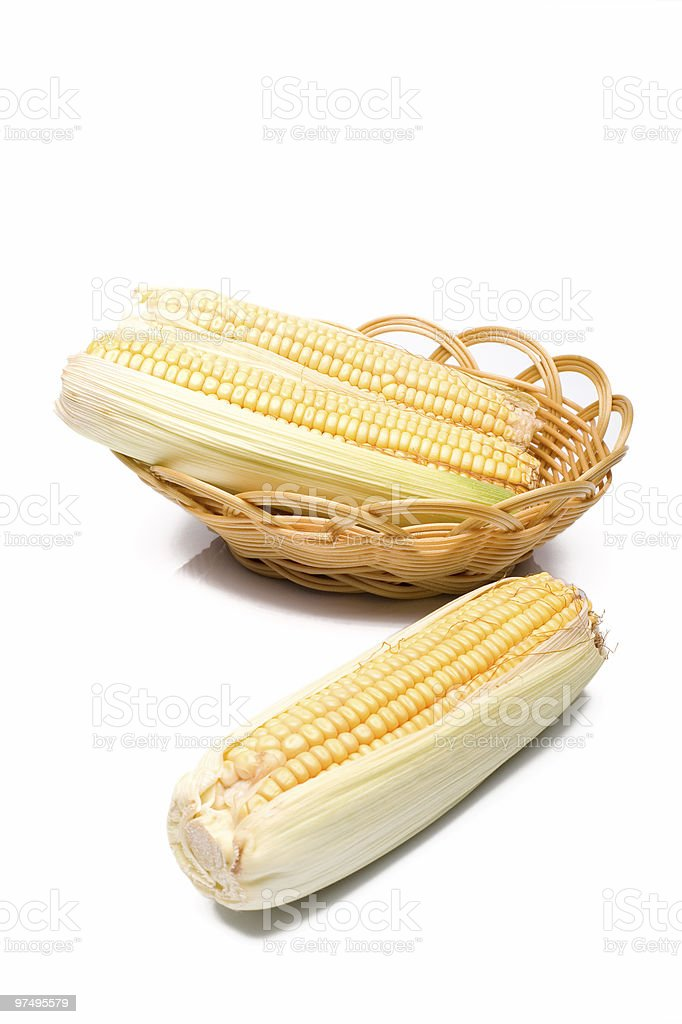 Corn cobs on white background royalty-free stock photo