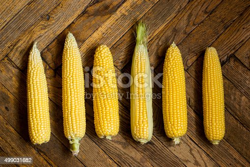 Six sweet crude corn cobs on shabby wooden floor
