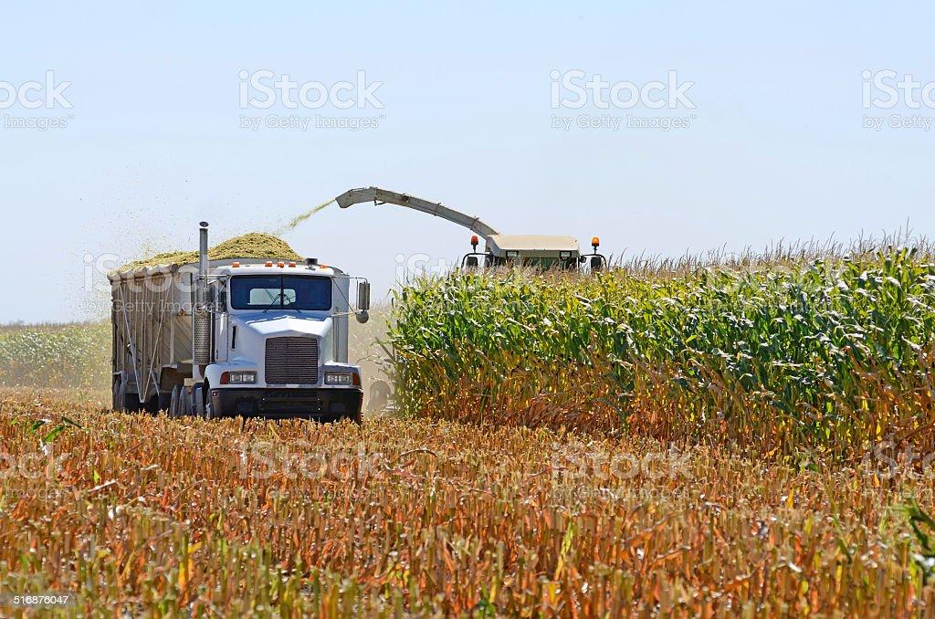 Corn Combine stock photo