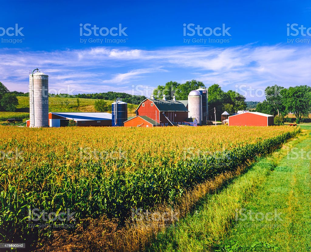 Corn crop and Iowa farm at harvest time - Royalty-free 2015 Stok görsel
