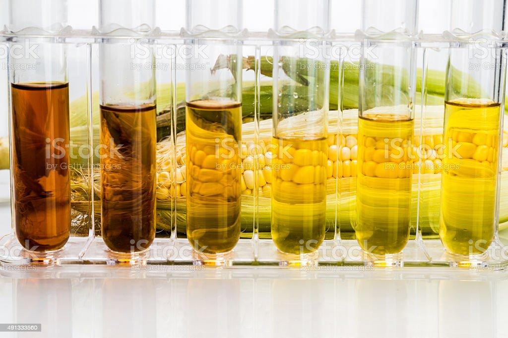 Corn derivados etanol combustible biológico con tubos de ensayo sobre fondo blanco - Foto de stock de 2015 libre de derechos