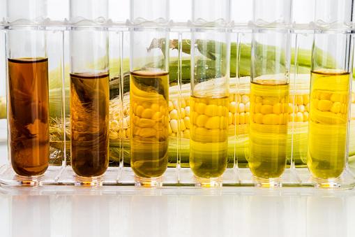 Corn Derivados Etanol Combustible Biológico Con Tubos De Ensayo Sobre Fondo Blanco Foto de stock y más banco de imágenes de 2015