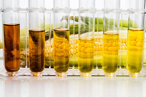 Corn derived ethanol biofuel with test tubes on white background Corn generated ethanol biofuel with test tubes on white background biofuel stock pictures, royalty-free photos & images