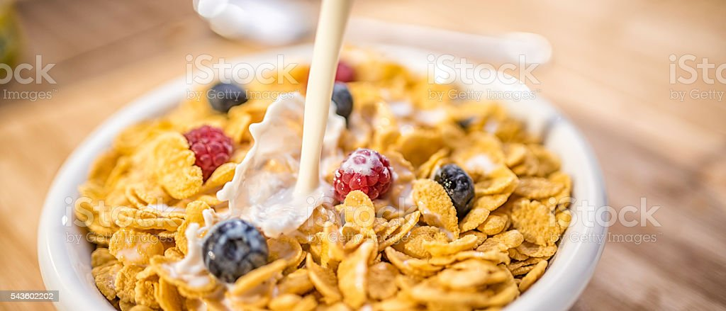 Corn flakes in white bowl stock photo