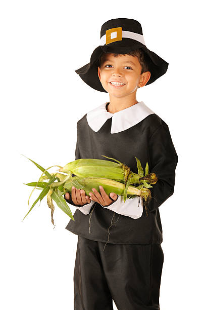 Corn for Thanksgiving An adorable preschooler dressed as a Pilgrim happily carring an armload of fresh corn.  On a white background. pilgrim stock pictures, royalty-free photos & images