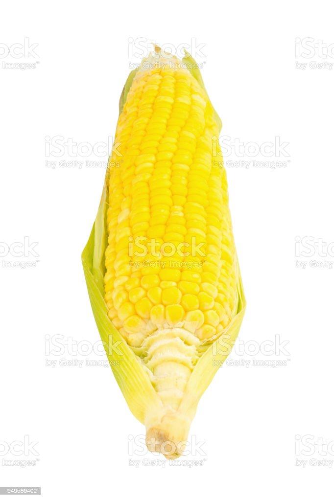 corn fresh isolated on white background stock photo