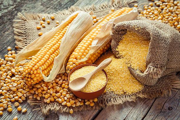 milho grumos e sementes, maçarocas de milho na mesa de madeira rústica. - rolão - fotografias e filmes do acervo