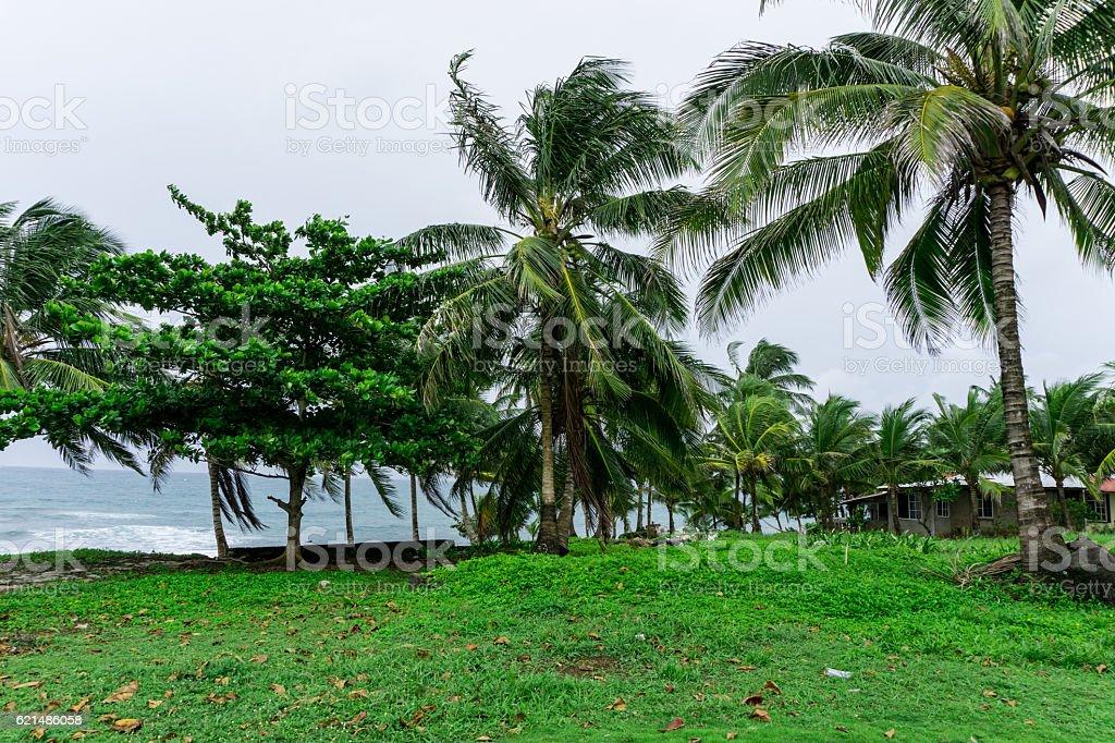 corn island, nicaragua. General view to ocean photo libre de droits