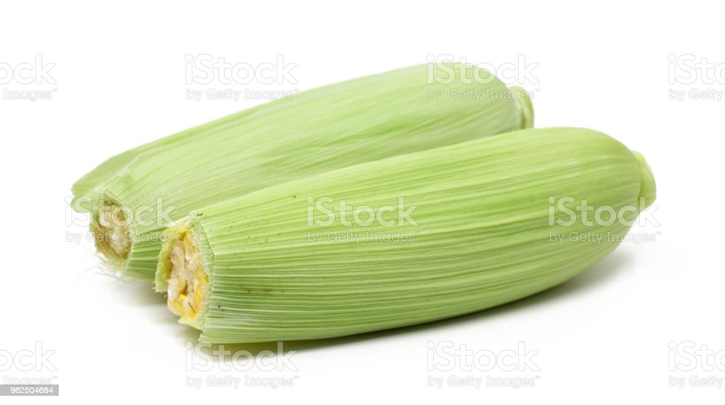 corn isolated on white background. - Royalty-free Agriculture Stock Photo