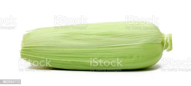 Foto de Milho Isolado No Fundo Branco e mais fotos de stock de Agricultura