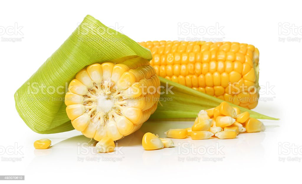 Corn isolated stock photo