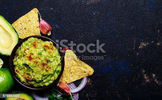 istock Corn Nachos and Guacamole Sauce 876852002