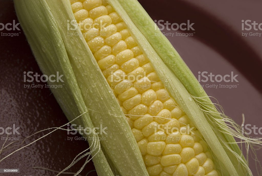 corn on plate royalty-free stock photo